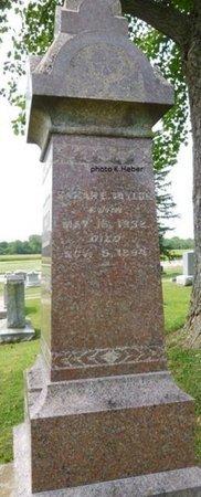TAYLOR, SARAH E - Champaign County, Ohio | SARAH E TAYLOR - Ohio Gravestone Photos