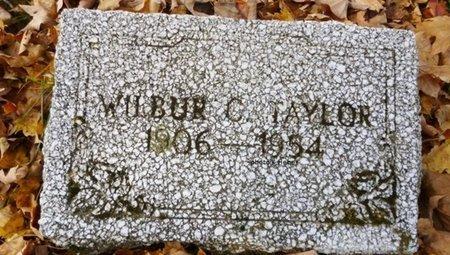 "TAYLOR, WILBUR C ""SLIM"" - Champaign County, Ohio   WILBUR C ""SLIM"" TAYLOR - Ohio Gravestone Photos"