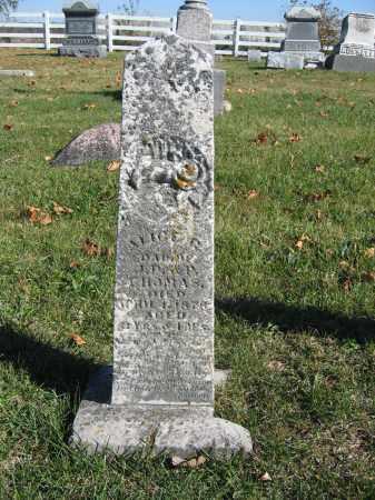 THOMAS, ALICE - Champaign County, Ohio | ALICE THOMAS - Ohio Gravestone Photos