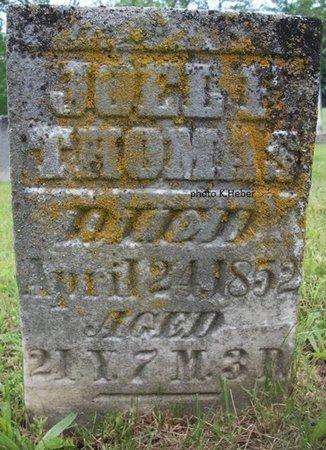THOMAS, JOEL F - Champaign County, Ohio | JOEL F THOMAS - Ohio Gravestone Photos