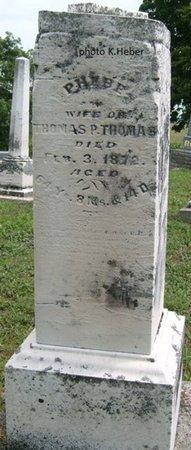 THOMAS, PHEBE - Champaign County, Ohio | PHEBE THOMAS - Ohio Gravestone Photos