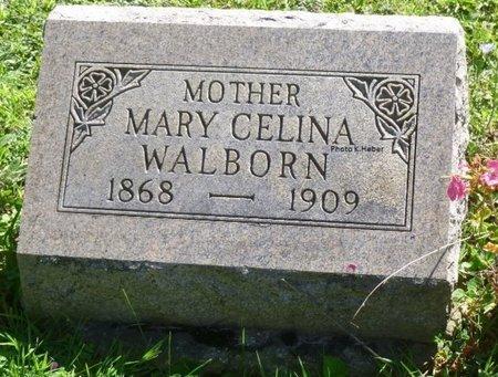 WALBORN, MARY CELINA - Champaign County, Ohio   MARY CELINA WALBORN - Ohio Gravestone Photos