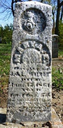 WALBORN, MARY A.E. - Champaign County, Ohio | MARY A.E. WALBORN - Ohio Gravestone Photos