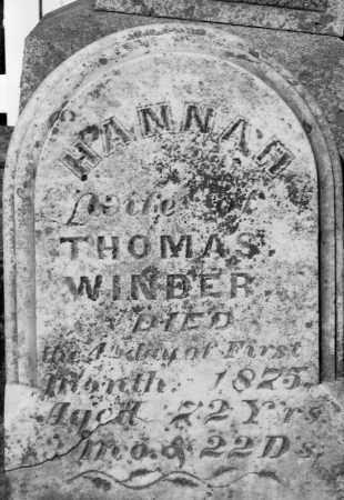 WINDER, HANNAH - Champaign County, Ohio | HANNAH WINDER - Ohio Gravestone Photos
