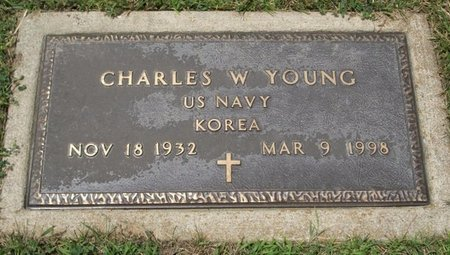YOUNG, CHARLES W - Champaign County, Ohio | CHARLES W YOUNG - Ohio Gravestone Photos