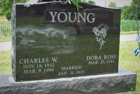 YOUNG, DORA ROSE - Champaign County, Ohio | DORA ROSE YOUNG - Ohio Gravestone Photos