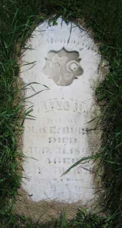 BURKE, ANNA H. - Clark County, Ohio   ANNA H. BURKE - Ohio Gravestone Photos