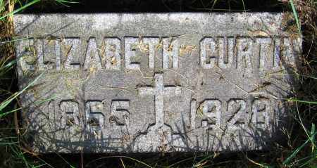 CURTIN, ELIZABETH - Clark County, Ohio | ELIZABETH CURTIN - Ohio Gravestone Photos