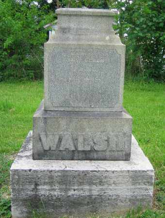 WALSH, JAS. - Clark County, Ohio   JAS. WALSH - Ohio Gravestone Photos