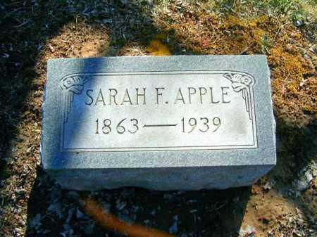 APPLE, SARAH  F - Clermont County, Ohio | SARAH  F APPLE - Ohio Gravestone Photos