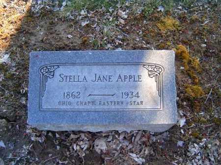 APPLE, STELLA  JANE - Clermont County, Ohio | STELLA  JANE APPLE - Ohio Gravestone Photos