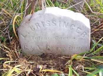 CRISSINGER, LUCY - Columbiana County, Ohio | LUCY CRISSINGER - Ohio Gravestone Photos