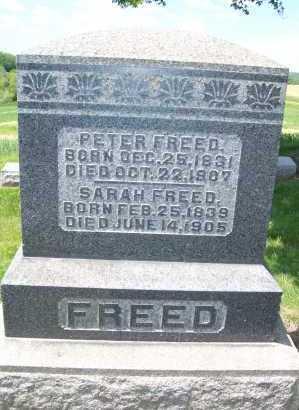 FREED, SARAH - Columbiana County, Ohio | SARAH FREED - Ohio Gravestone Photos