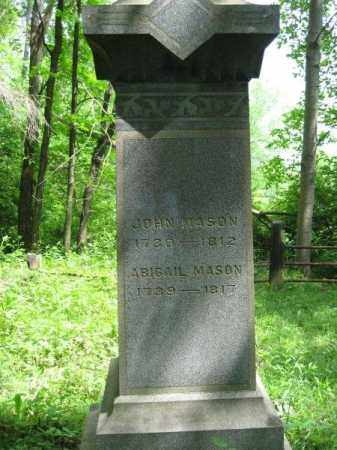 MASON, ABIGAIL - Columbiana County, Ohio | ABIGAIL MASON - Ohio Gravestone Photos