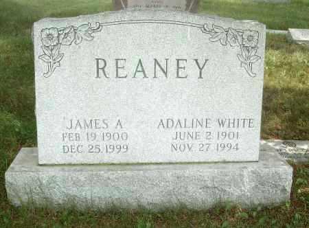REANEY, JAMES A - Columbiana County, Ohio | JAMES A REANEY - Ohio Gravestone Photos