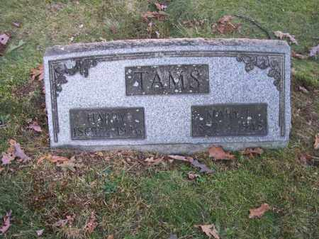 TAMS, HARRY - Columbiana County, Ohio | HARRY TAMS - Ohio Gravestone Photos
