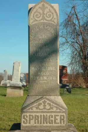 SPRINGER, GEORGE W. - Crawford County, Ohio | GEORGE W. SPRINGER - Ohio Gravestone Photos