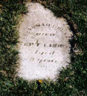 BURKET, SUSANNAH - Darke County, Ohio   SUSANNAH BURKET - Ohio Gravestone Photos