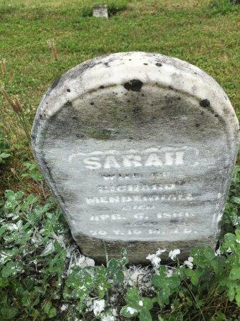 PEARSON MENDENHALL, SARAH - Darke County, Ohio   SARAH PEARSON MENDENHALL - Ohio Gravestone Photos