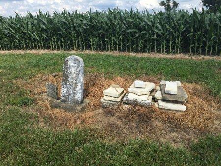 MILLER CEMETERY VIEW, -- - Darke County, Ohio   -- MILLER CEMETERY VIEW - Ohio Gravestone Photos