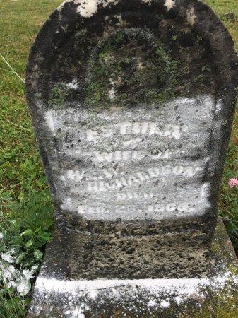 JONES RICHARDSON, ESTHER - Darke County, Ohio | ESTHER JONES RICHARDSON - Ohio Gravestone Photos