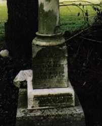 SCHLECHTY, LAVINA - Darke County, Ohio   LAVINA SCHLECHTY - Ohio Gravestone Photos