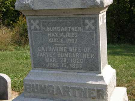BUMGARTNER, HARVEY - Delaware County, Ohio | HARVEY BUMGARTNER - Ohio Gravestone Photos