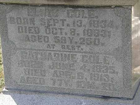 COLE, CATHARINE - Delaware County, Ohio | CATHARINE COLE - Ohio Gravestone Photos