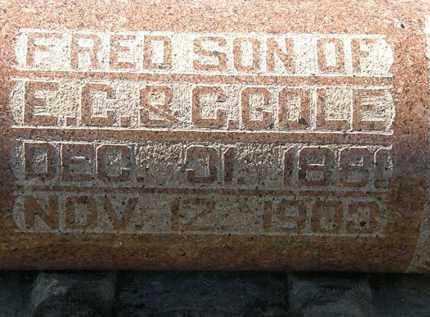 COLE, FRED - Delaware County, Ohio | FRED COLE - Ohio Gravestone Photos