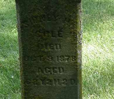 COLE, SYDNEY H. - Delaware County, Ohio   SYDNEY H. COLE - Ohio Gravestone Photos