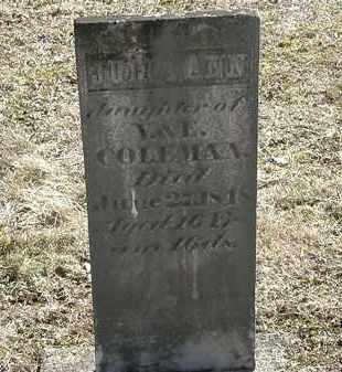 COLEMAN, JULIA ANN - Delaware County, Ohio | JULIA ANN COLEMAN - Ohio Gravestone Photos