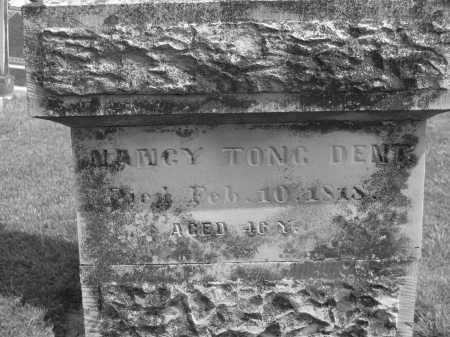 DENT, NANCY - Delaware County, Ohio   NANCY DENT - Ohio Gravestone Photos