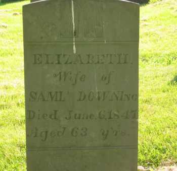 DOWNING, ELIZABETH - Delaware County, Ohio   ELIZABETH DOWNING - Ohio Gravestone Photos