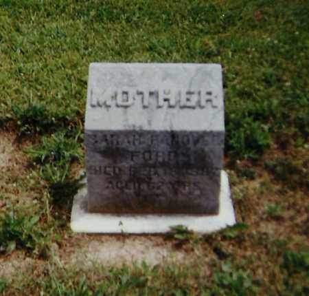 HANOVER FORD, SARAH - Delaware County, Ohio   SARAH HANOVER FORD - Ohio Gravestone Photos