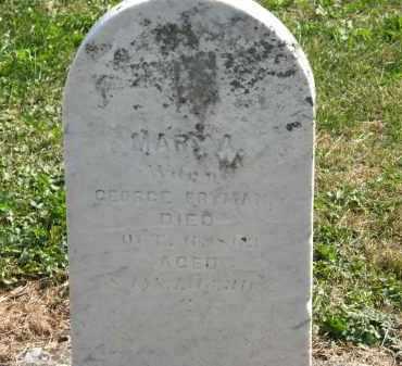 FRYMAN, MARY A. - Delaware County, Ohio | MARY A. FRYMAN - Ohio Gravestone Photos