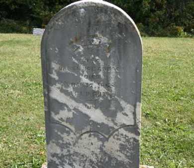 HOLLENBACH, ANNA - Delaware County, Ohio | ANNA HOLLENBACH - Ohio Gravestone Photos