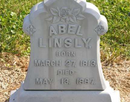 LINSLY, ABEL - Delaware County, Ohio | ABEL LINSLY - Ohio Gravestone Photos