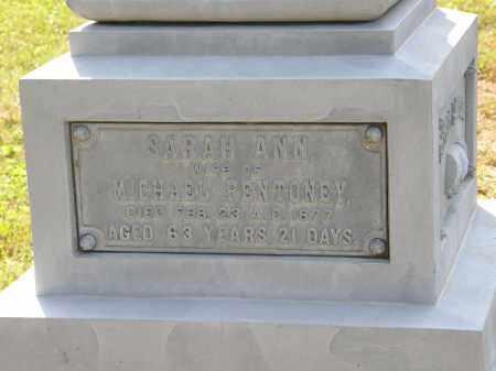 PENTONEY, MICHAEL - Delaware County, Ohio   MICHAEL PENTONEY - Ohio Gravestone Photos