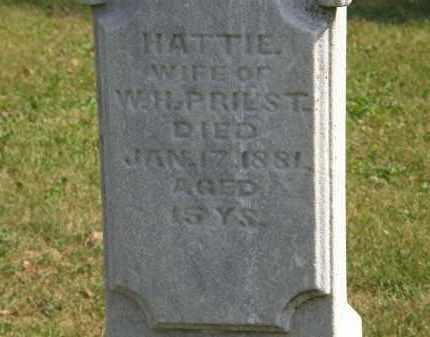 PRIEST, W.H. - Delaware County, Ohio | W.H. PRIEST - Ohio Gravestone Photos