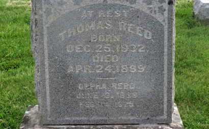 REED, THOMAS - Delaware County, Ohio | THOMAS REED - Ohio Gravestone Photos