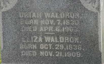WALDRON, URIAH - Delaware County, Ohio | URIAH WALDRON - Ohio Gravestone Photos