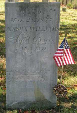 WILLIAMS, ANSON - Delaware County, Ohio | ANSON WILLIAMS - Ohio Gravestone Photos