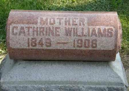 WILLIAMS, CATHRINE - Delaware County, Ohio   CATHRINE WILLIAMS - Ohio Gravestone Photos