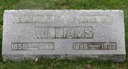 WILLIAMS, DAVID W. - Delaware County, Ohio | DAVID W. WILLIAMS - Ohio Gravestone Photos