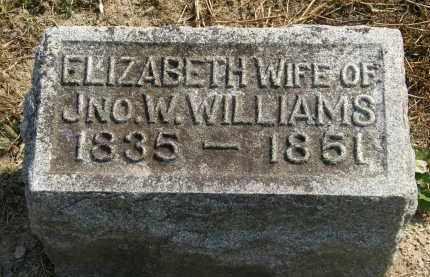 WILLIAMS, ELIZABETH - Delaware County, Ohio   ELIZABETH WILLIAMS - Ohio Gravestone Photos
