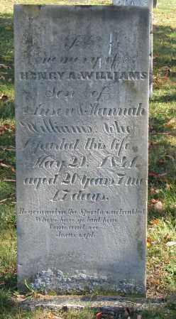 WILLIAMS, HENRY A. - Delaware County, Ohio   HENRY A. WILLIAMS - Ohio Gravestone Photos