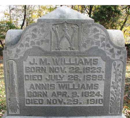 HOLCOMB WILLIAMS, ANNIS - Delaware County, Ohio | ANNIS HOLCOMB WILLIAMS - Ohio Gravestone Photos