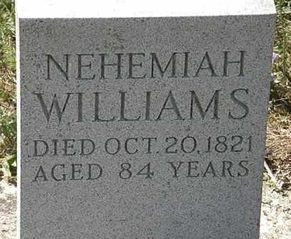 WILLIAMS, NEHEMIAH - Delaware County, Ohio   NEHEMIAH WILLIAMS - Ohio Gravestone Photos