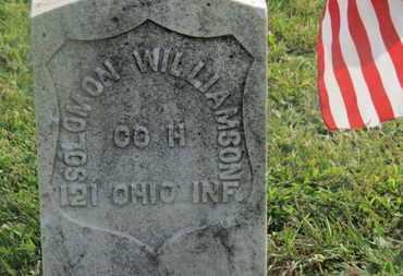WILLIAMSON, SOLOMON - Delaware County, Ohio | SOLOMON WILLIAMSON - Ohio Gravestone Photos