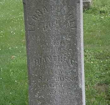 HILL, DIANTHA G. - Erie County, Ohio   DIANTHA G. HILL - Ohio Gravestone Photos